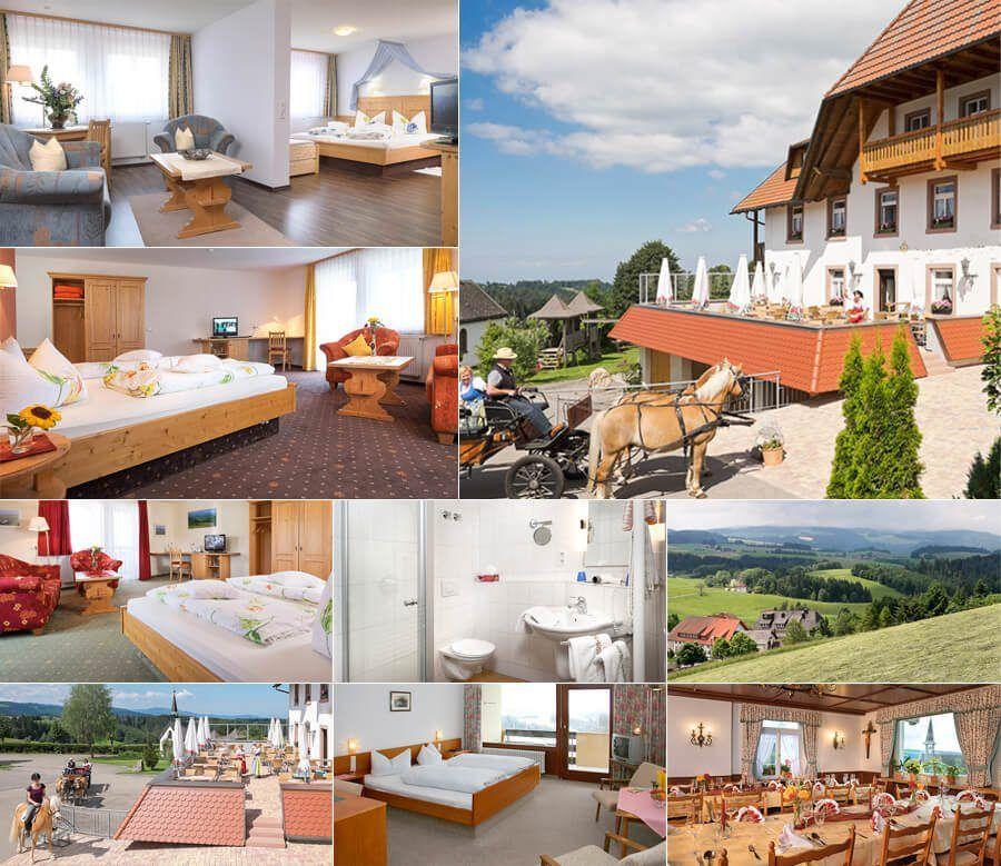 בית מלון הכולל גם 2 דירות נופש וחוות סוסים באזור פלדברג