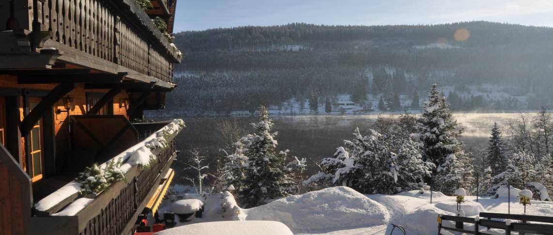 הנוף לאגם בחורף