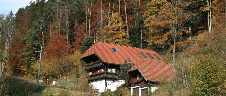 בית נופש ביער השחור GBF008024-18