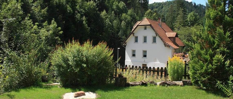 בית נופש ביער השחור GBF0081