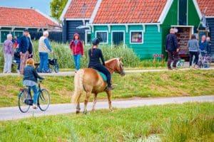 כפר נופש בהולנד למשפחות